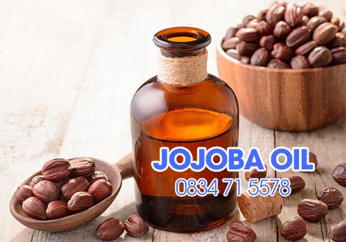 Dầu Jojoba - Dầu Jojoba nguyên chất (Jojoba Oil)- Dầu nền Jojoba