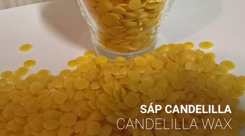 sáp candelilla - candelilla wax
