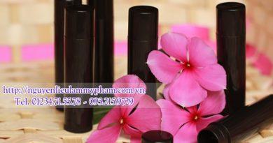 Thỏi son đen - Thỏi son nhựa đen handmade